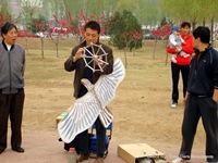 barrileteros chinos
