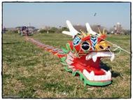 Dragon Chino listo para el despegue
