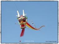 Dragon Chino en vuelo!