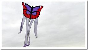 Barrilete Mariposa de Diana