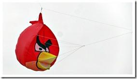Angry Bird de Matías