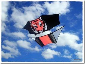 Barrilete Tigre Dopero - Héctor