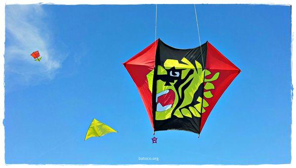 Barrilete Fled Bandera de Sandokan