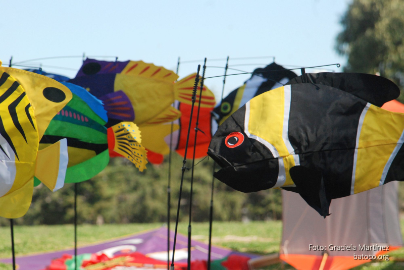 Festival Barriletes Rosario 2018 19
