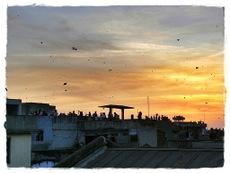 Festival de Ahmedabad