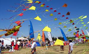 Fiesta Viento 2006